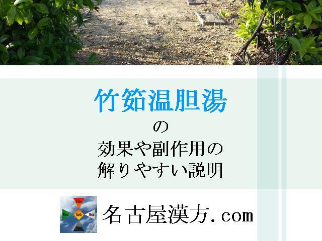 竹筎温胆湯